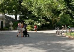 picking a stroller